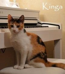 Kinga-0b