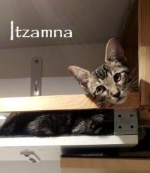 Itzamna-01