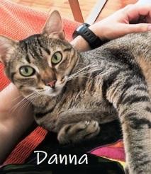 Danna-01