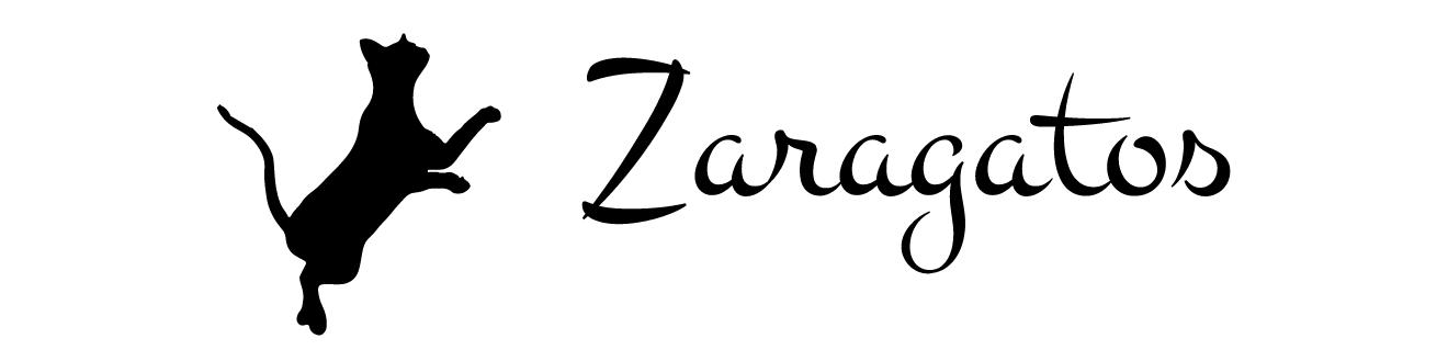 ZARAGATOS. Gatos en adopción, Zaragoza
