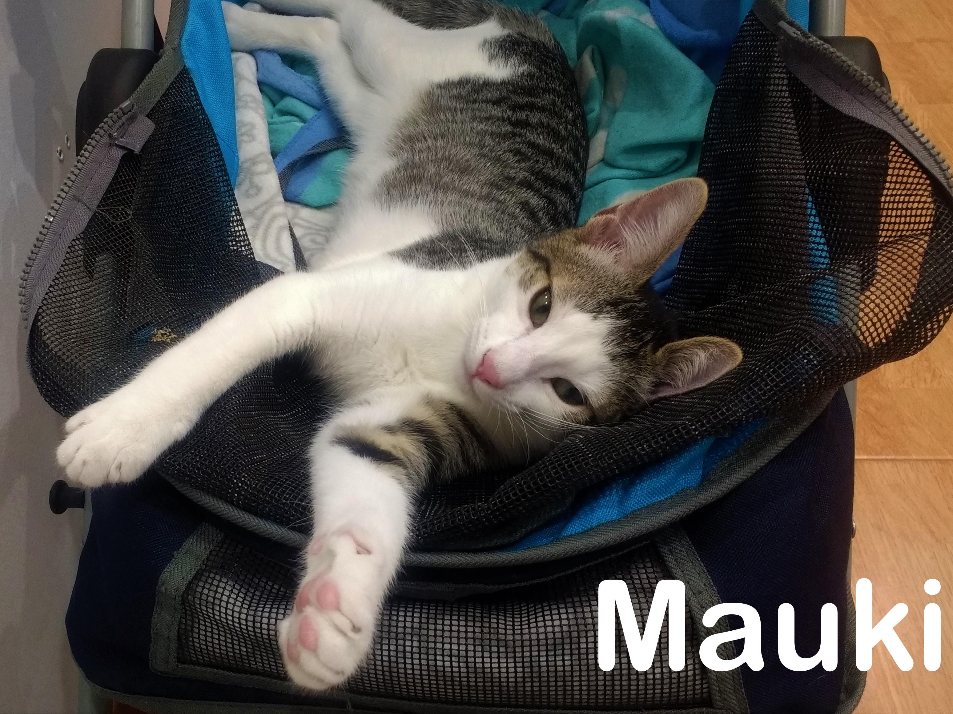 MAUKI5